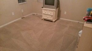 Dry Extraction Carpet cleaning Las Vegas green carpet cleaning