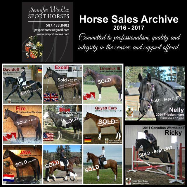 Horse Sales Archive