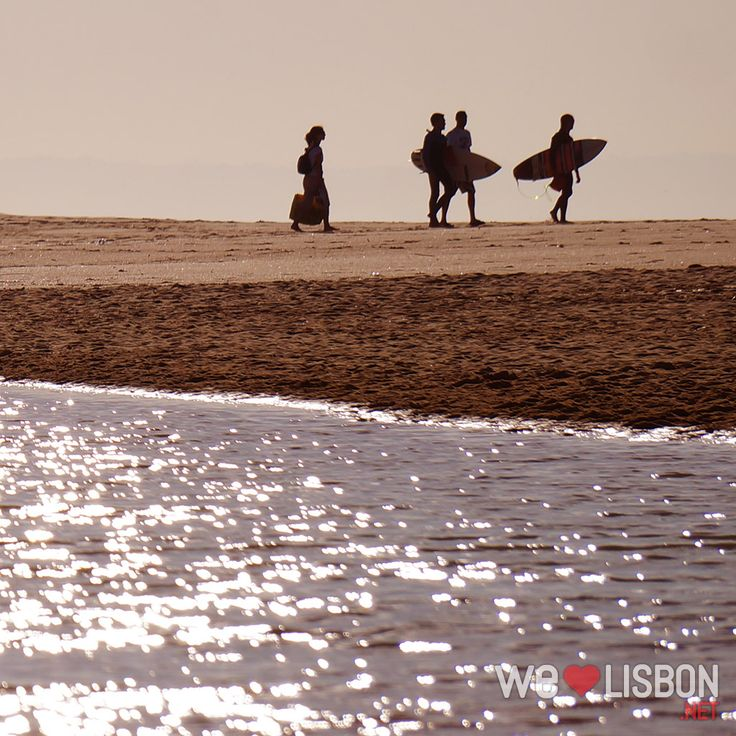 Surfing at Carcavelos Beach in Lisbon, Portugal