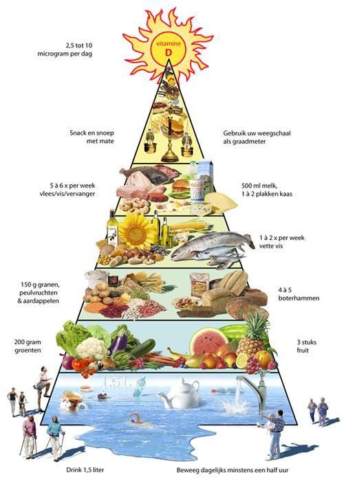 voedselpiramide leefstijl