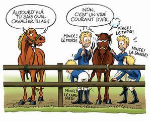 Chevalmag - Es-tu facilement stressé ?   Chevaux drôles, Humour cheval, Meme de cheval
