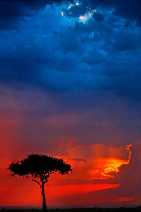 imalikshake:          imalikshake: My Africa 48 by ~catman-suha