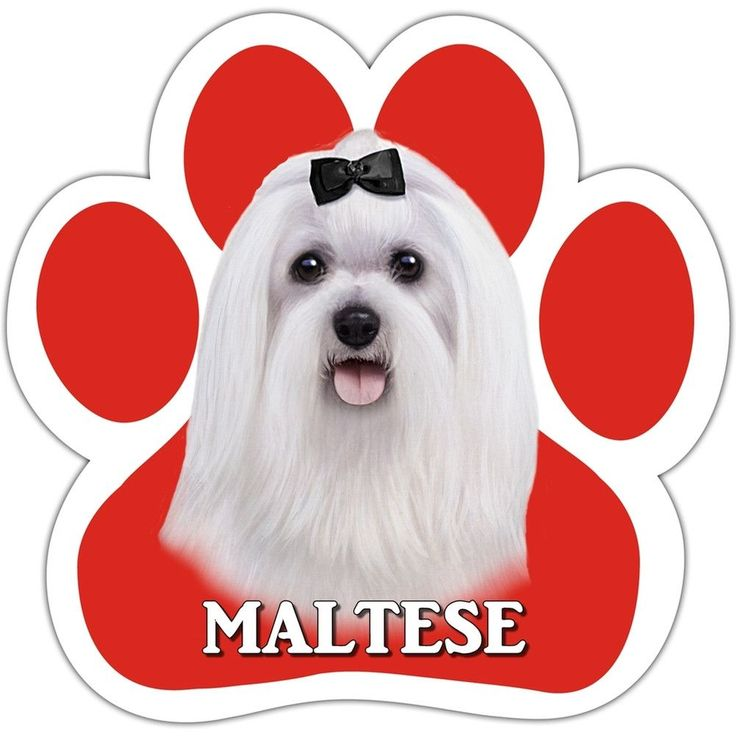 Maltese Paw Shaped Car Magnet