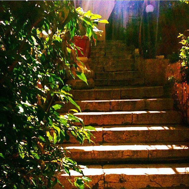 #Corfu #Sunshine #Flowers  Photo credits: @tania__el
