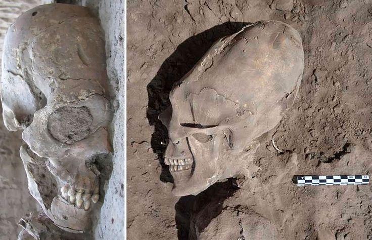 In 2012 werden er 25 oude skeletten gevonden bij het dorpje Onavas in Noord-West Mexico. 13 hadden er verlengde schedels, waarvan er 5 ook nog vreemde gebitten hadden met puntige voortanden en platte hoektanden