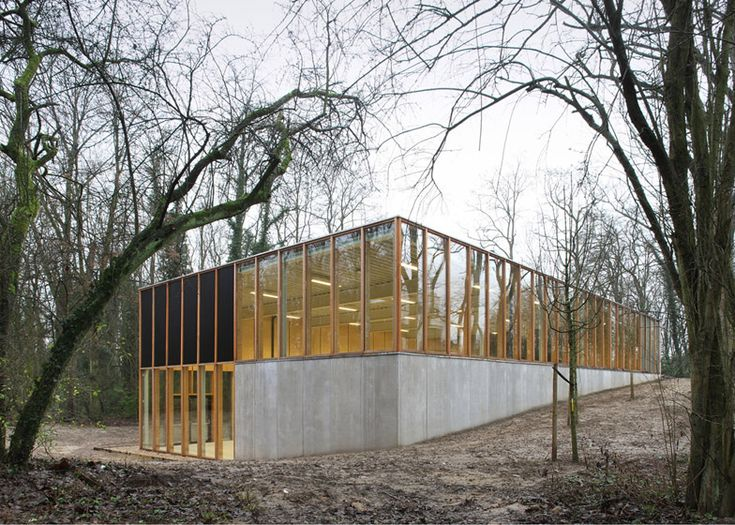 This concrete sports hall has been built into a hillside in the wooded grounds of a school just outside Brussels.