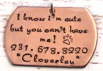 Hey, I found this really awesome Etsy listing at http://www.etsy.com/listing/161786069/hand-stamped-personalized-copper-dog-pet