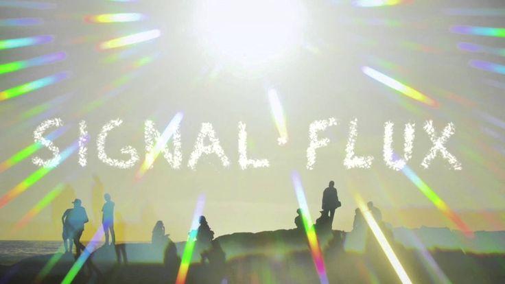 Signal Flux - Rekt right