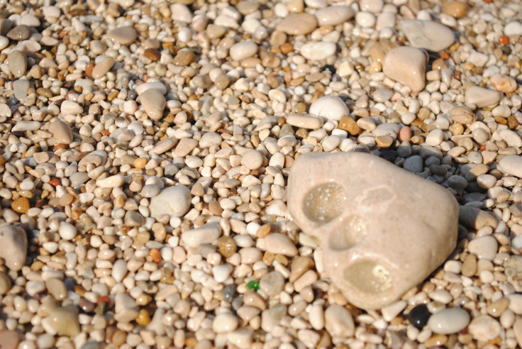 """""""The pebble /   is a perfect creature    / equal to itself  /  mindful of its limits  /  filled exactly  / with a pebbly meaning /  with a scent that does not remind one of anything /  does not frighten anything away  does not arouse desire""""  From the poem by Zbigniew Herbert"""