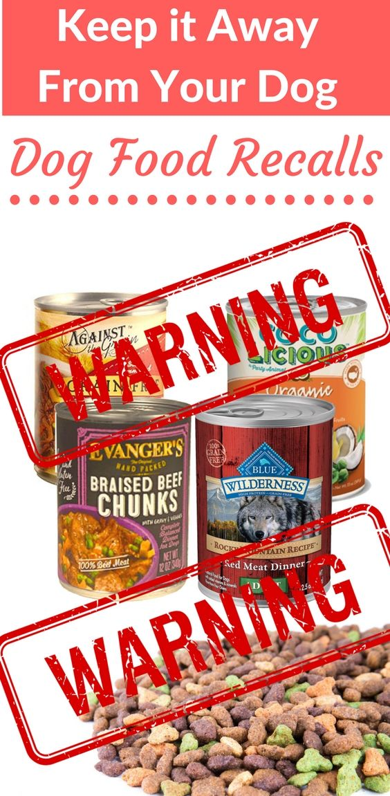 Keep it  away from your dog!!. List of dog food recalls from 2017 These foods & treats  may be dangerous & toxic to your dog Dog Care & Health Tips for happy life -- Repin to your own inspiration board --