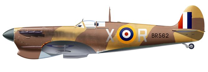 Spitfire Mk VB BR562 X-R flown by Flt Lt Ray Hesselyn RNZAF, No249 Sqn, July 1942, Malta