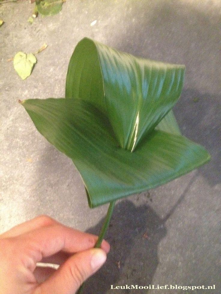 aspidistra blad, aspidistra, aspidistra blad vouwen, gevouwen blad, blad boeket, basis techniek bloemschikken, bloemschikken