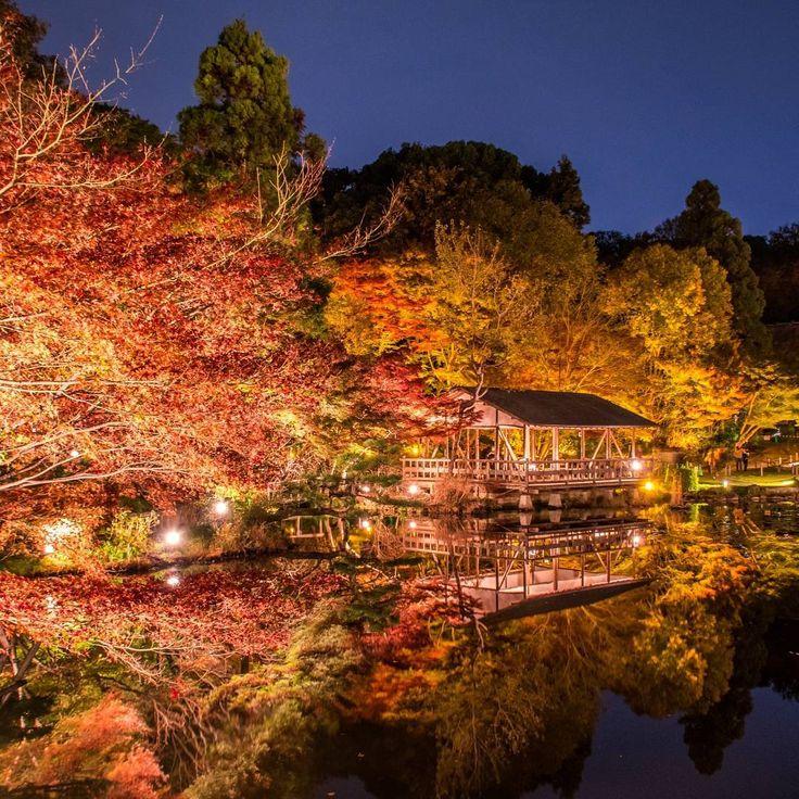 愛知県内のおすすめ紅葉スポット10選