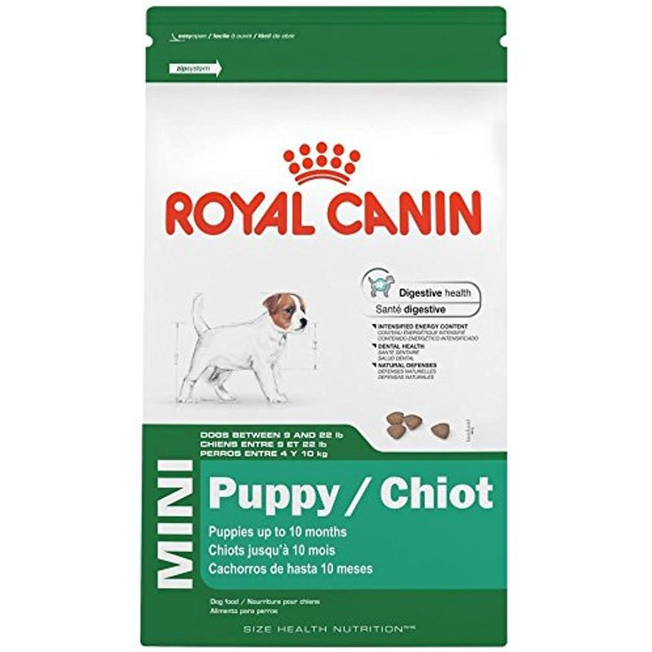 2.5-Pound, Digestive Health Mini Puppy Dry Dog Food --- If you want to know more, click on the image. (This is an affiliate link and I receive a commission for the sales)