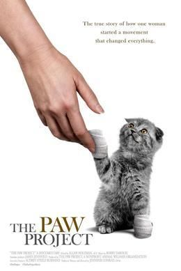 """The Paw Project -- help bring this important documentary to Austin by reserving your ticket today. Support the """"No Declaw"""" movement. Click thru to read more."""