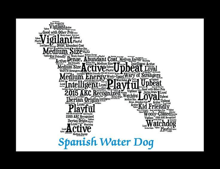 Als u een Spaanse Waterhond huisdier ouder of voor een hondenliefhebber Yorkiepoo winkelen, mijn huisdier portret kunst aan de muur maakt een ideale aanvulling voor een hondenliefhebber thuis het decor. Deze aanbieding is voor een Spaanse Waterhond hond huisdier portret.  Mijn huisdier illustratie vangt de persoonlijkheidskenmerken van uw trouwe kleine vriend en combineert hen in een silhouet van een Spaanse Waterhond. Het eindresultaat is een hond kunst print die is elegant en modern…