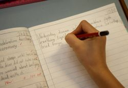 Naplan writing guide and assessment criteria
