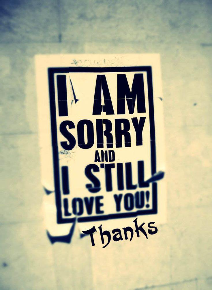 I Love You Quotes: 17 Best Images About I'm Really Sorry. Please Forgive Me