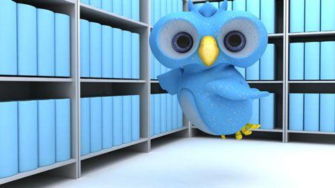 در بخش Bio در توییتر ، تنها 160 کاراکتر در اختیار دارید بنابراین باید بسیار مختصر و هوشمندانه از کلمات استفاده کنید. پس با بررسی این 5 نکته کلیدی و اجرای آنها علاوه بر تاثیرگذاری بر روی فالوورهای خود ، سطح بیو در توییتر خود را ارتقا دهید
