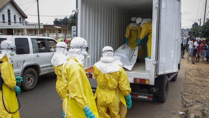 ΤΟ ΚΟΥΤΣΑΒΑΚΙ: Που: Ο Έμπολα μπαίνει αναπόφευκτα στην Ευρώπη. Η Διευθύντρια του Περιφερειακού Γραφείου του Παγκόσμιου Οργανισμού Υγείας (WHO) (ΠΟΥ) Zsuzsanna Jakob πιστεύει ότι η εμφάνιση των νέων μολύνσεων από τον ιό Έμπολα του αιμορραγικού πυρετού στην Ευρώπη είναι αναπόφευκτη, αναφέρει το ειδησεογραφικό πρακτορείο Reuters την Τρίτη.