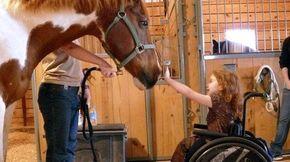 Abaixo-assinado · Assine agora pelas crianças especiais que precisam do tratamento de Equoterapia! · Change.org