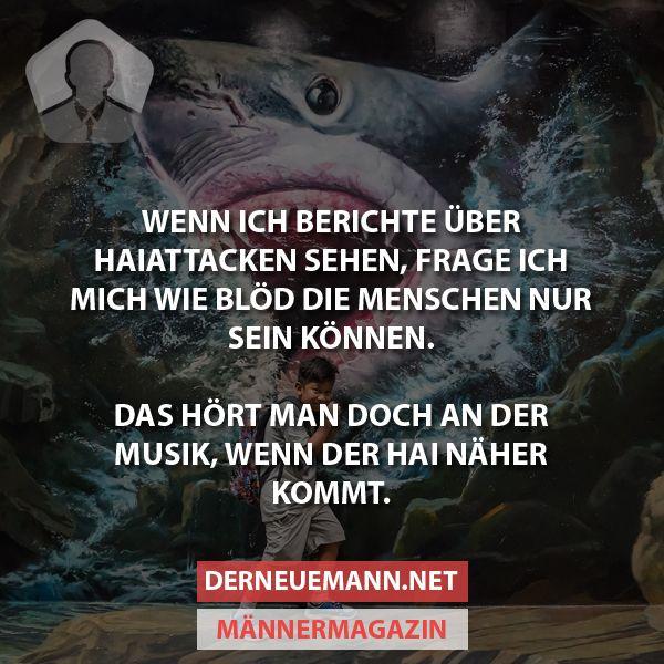 Haiattacken #derneuemann #humor #lustig #spaß #tiere