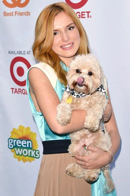 These stars love to hang with their canine babies   #celebrities  #dogs    http://www.petrashop.com/