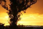 Sunset - Kaimai Views Ohauiti 2012