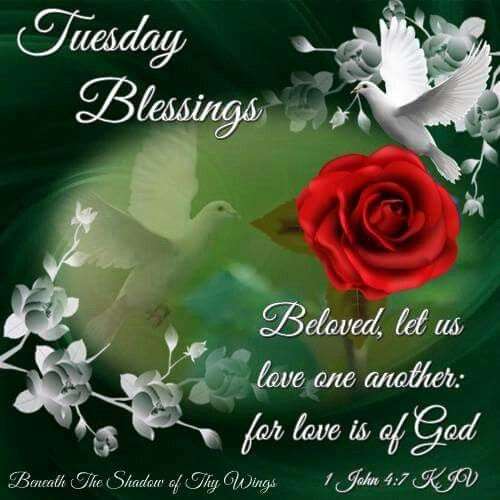 Image result for tuesday blessings quotes and images