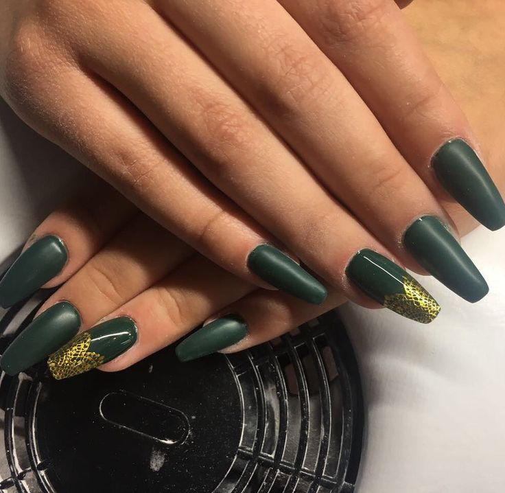 Modellage mit Farbgel Moos, versiegelt mit Versiegelungsgel Matt und 3D Lace Sticker in Gold Alles von www.magnonails.de #Instagram #Nailstagram #Nails #Nagel #Nailart #Naildesign #Chromenails #Nailartclub #manicure #video #tutoral #videos #loveit #diy #colorful #love #nägelmatt #creative #inspiration #Makeup #beauty #kosmetik #naillove #nailstudio #Nailfan #Gelnails #instanails #schönenägel