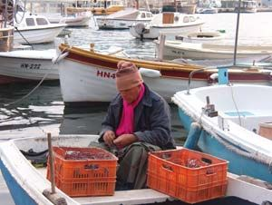 Sea was generous to our fisherman Herceg Novi, Montenegro