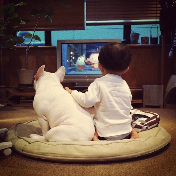 Adorable Photos Of Friendship Between A Japanese Boy And His Dog