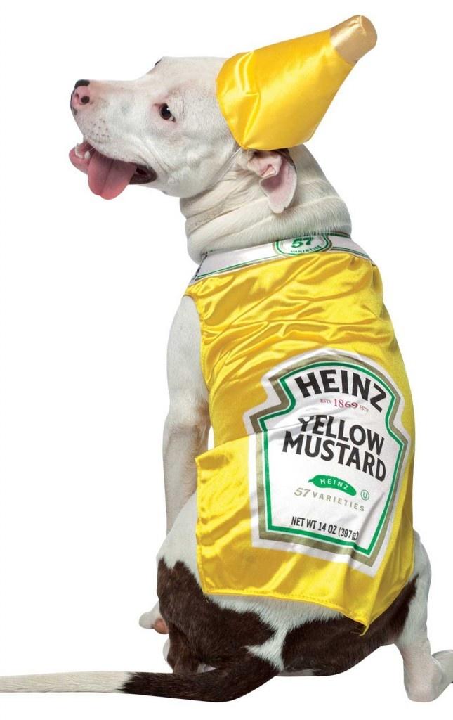 yellow mustard dog costume