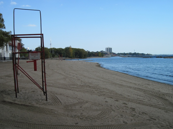 Empty beaches except for the seagulls and Geese; Sunnyside Bathing Pavillion