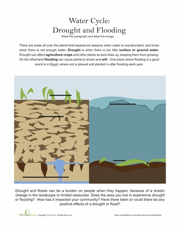 Compare and contrast the flood story - Essay Example