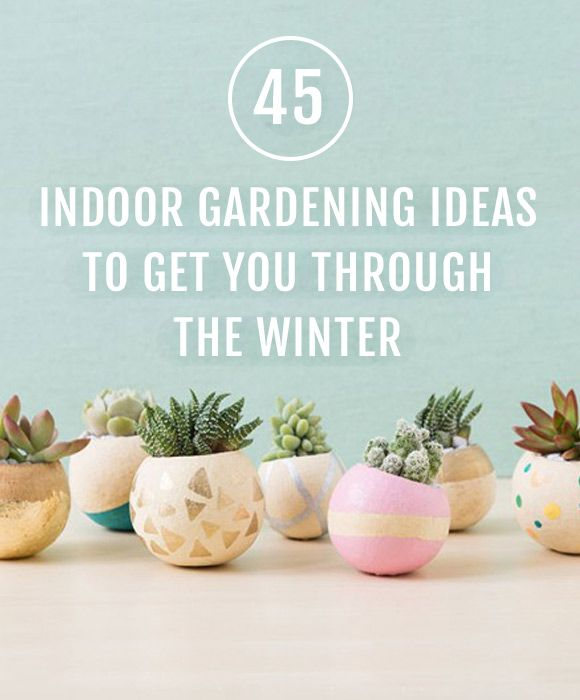 Garden Ideas Videos 185 best gardening ideas images on pinterest | garden projects