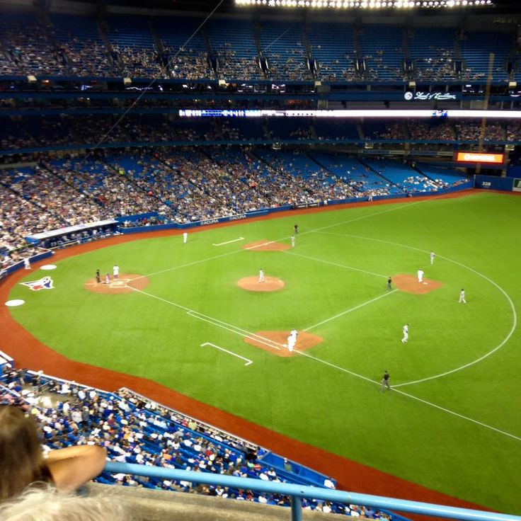 Some of the members on the TCOR Council got together to watch a Toronto Blue Jays baseball game on Thursday June 18th and this was their view! #ComeTogether #BlueJays