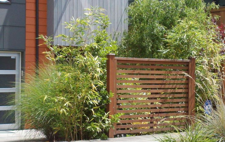 Pin by hks on outdoor design pinterest trees the o for Small privacy fence