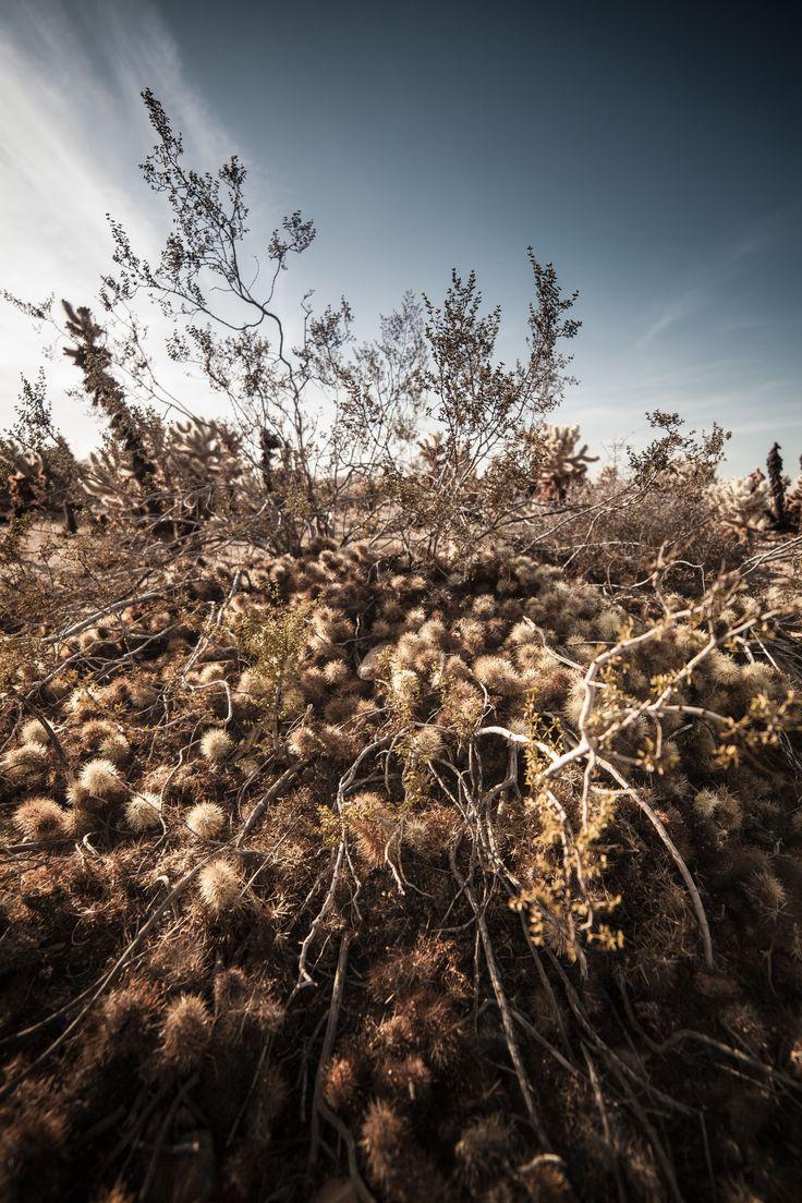 38 best Brock Daves\' Landscape and Nature Portfolio images on ...