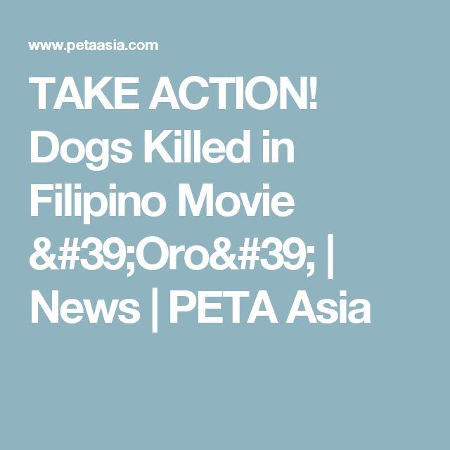 TAKE ACTION! Dogs Killed in Filipino Movie 'Oro' | News | PETA Asia
