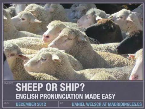 Sheep or ship? Un poco de pronunciación en inglés