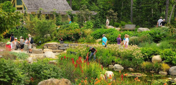 13 best images about maine vacation on pinterest gardens holy donut and clam chowder