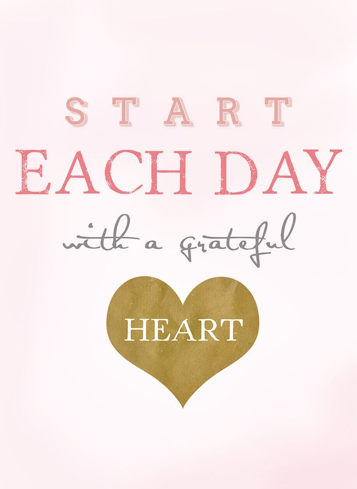 Start Each Day...❤ Your Actions Speak Louder Then Your Words. ~ Today is the day to climb a little higher, push alot harder, and to dig a little deeper into God's plans for your life, and bloom right where you are planted. Being Thankful.❤{DM}