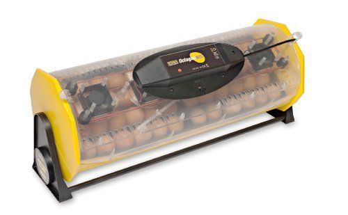 Brinsea Products Fully Automatic Egg Incubator for Hatching 48 Chicken Eggs or Equivalent -- Details can be found by clicking on the image.