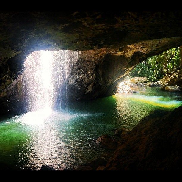 Natural Bridge, Gold Coast #Australia