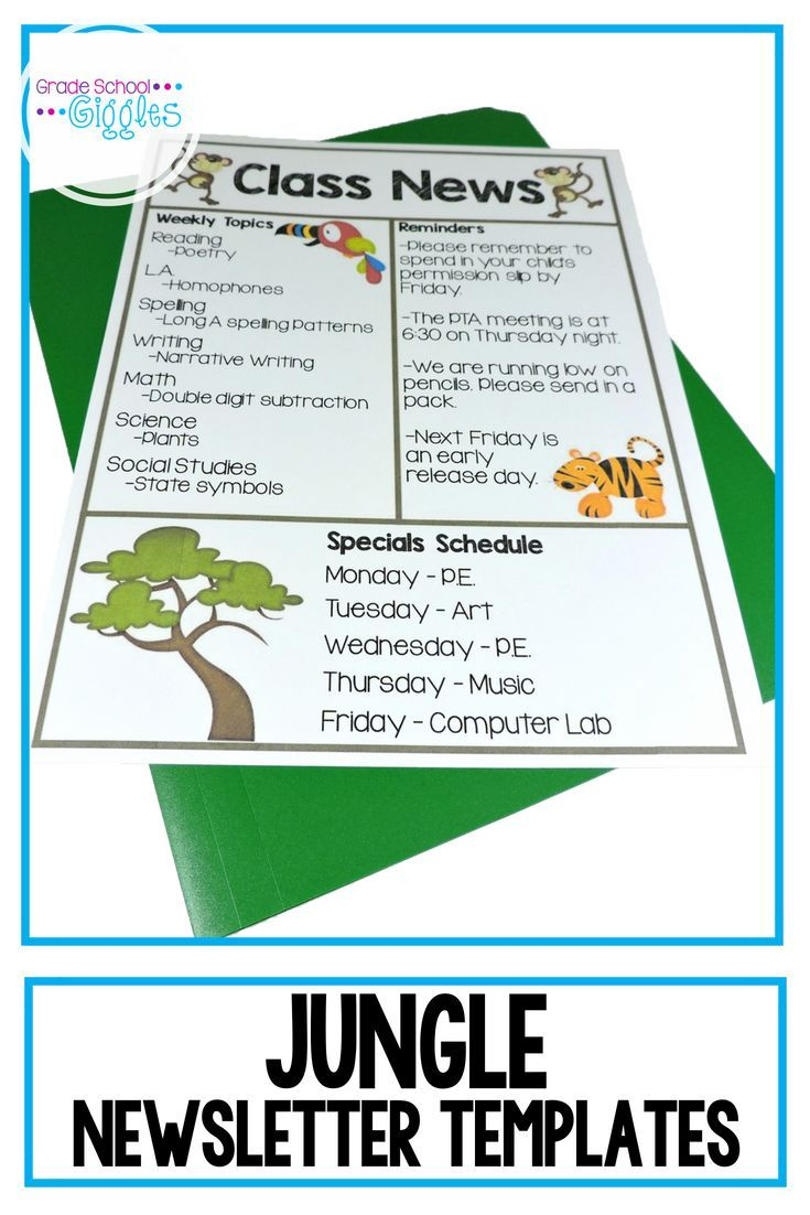 newsletter template editable jungle theme school organization