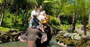 Bali Safari Marine Park Elephant Back Safari package