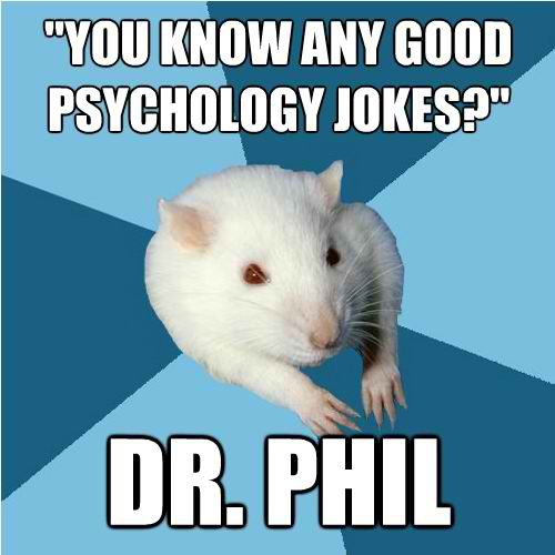 Whats it like, a day in the life of a graduate psychology program?