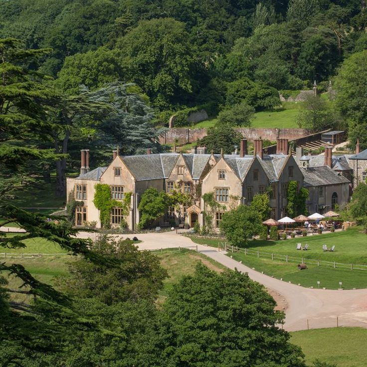 Devon: The Pig at Combe, Honiton (3 hr drive from London), I love the Pig.♔...