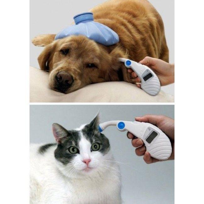 Termômetro de Ouvido para Pets - Ideal para Cães, Gatos, Coelhos, Chinchilas, Ferrets e Porquinhos da Índia Pet-Temp - Advanced Monitors - Petshop